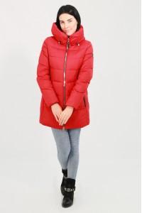 Куртка женская 716350N21R ЦВ.36